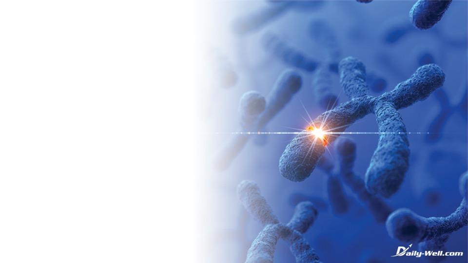 Stammzellen Aktivierung